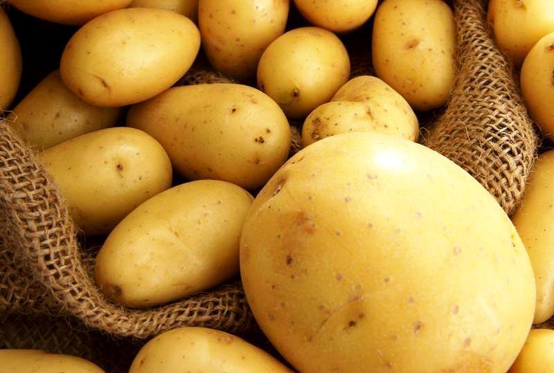 Как лечит геморрой с помощью картофеля