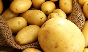 Как лечить геморрой картофелем?
