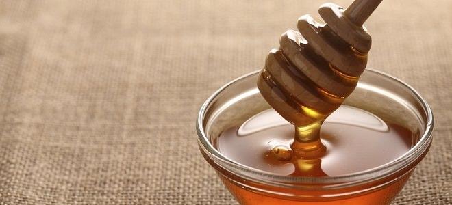 мед для лечения геморроя